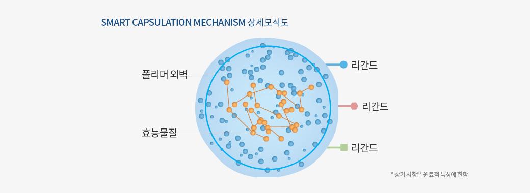 smart capsulation mechanism 상세모식도, 폴리머 외벽, 효능물질, 리간드